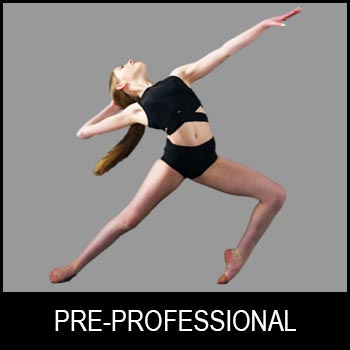 Pre-Professional Program